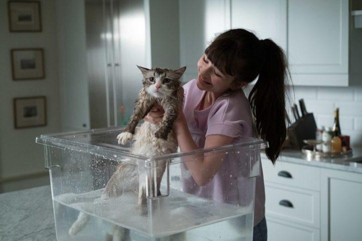 11.Nine Lives แมวเก้าชีวิตเพี้ยนสุดโลก